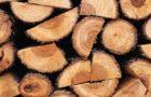 Material lemnos – Ocolul Silvic Tismana